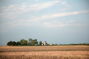 A 2008 photo of a farm near Gibson City, Ill./ Daniel Schwen